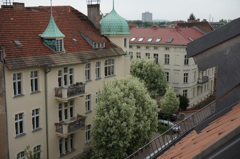 Ausblick in Potsdamer Straße zur Baumblüte.