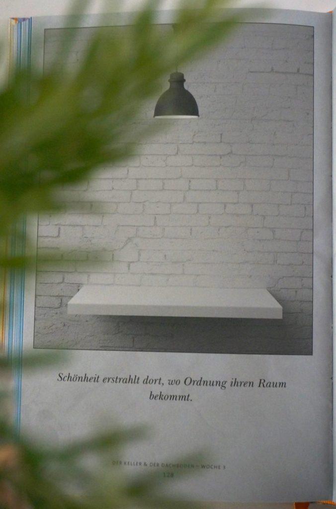 Monatsrückblick, Juni, 2019,Fräulein Ordnung, Denise Colquhoun, Buch, aufräumen, Ordnung, Mari Kondo, Schminktante, Anja Frankenhäuser,