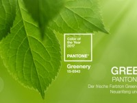 Greenery – Pantone Farbe des Jahres 2017