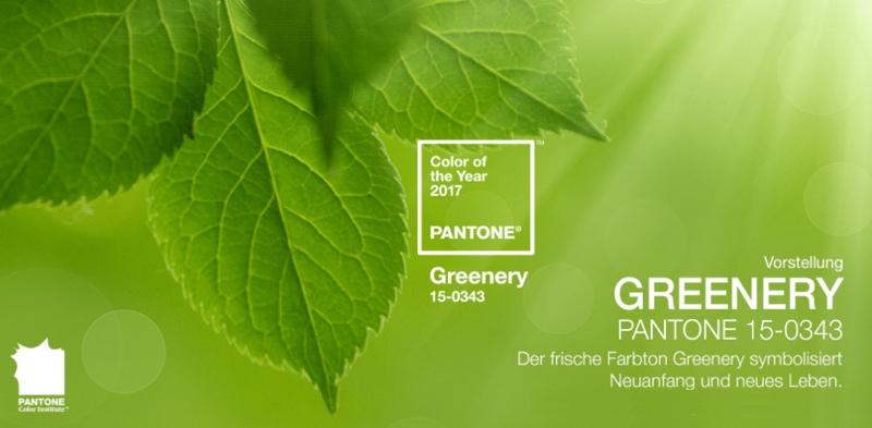 Greenery heißt die Pantone Farbe des Jahres 2017.