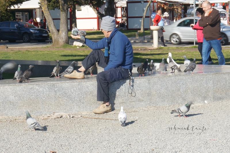 Menschen, Mann, Tauben, Vögel, Tiere, füttern, Lissabon, Reise, Schminktante, Portugal, Lissabon, Reise, Reisetipps, Reisen, Travel