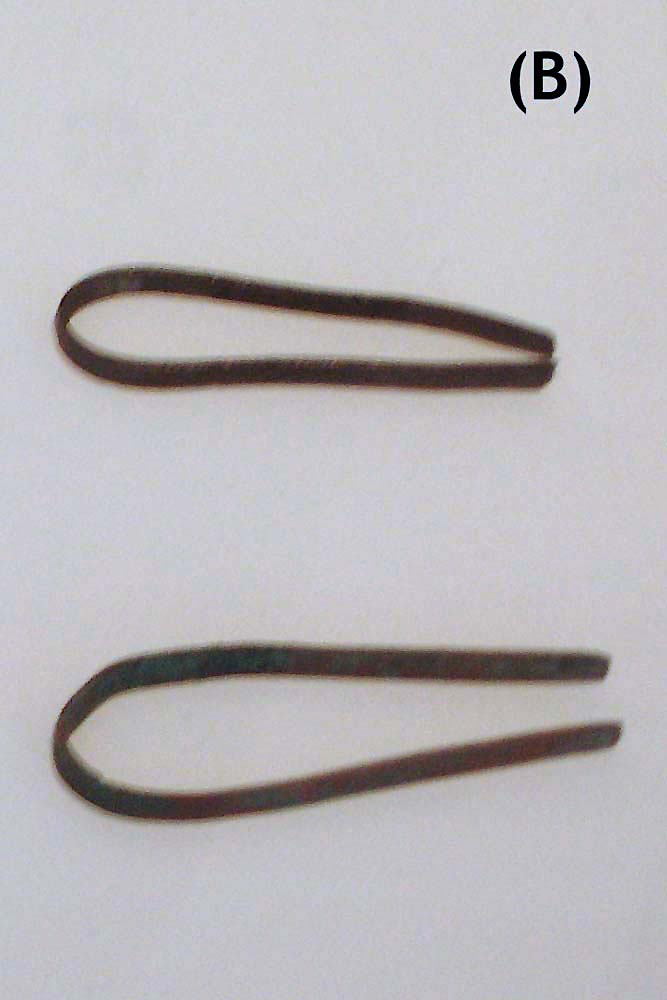 Altägyptische Varianten der Pinzette